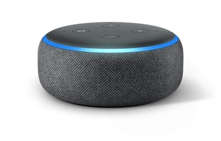 A Smart Speaker (Amazon Echo or Google Home)