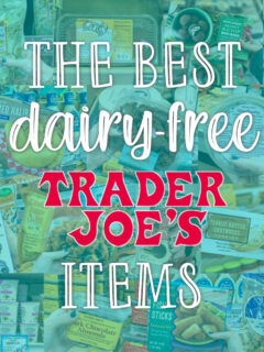 The Best Dairy-Free Trader Joe's Items square text graphic