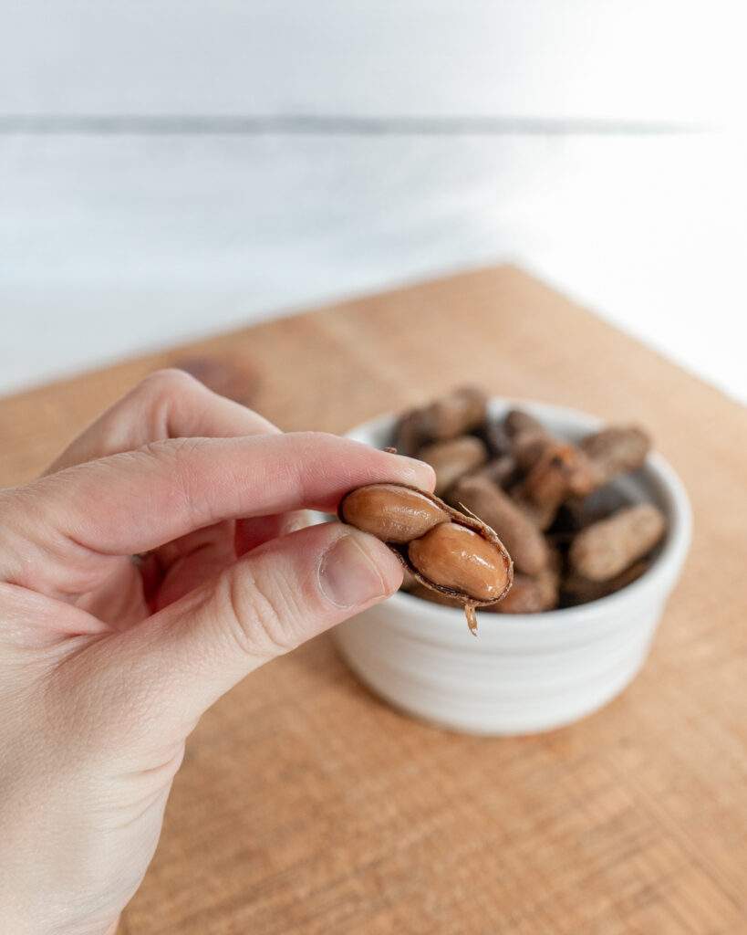 Hand holding Instant Pot Boiled Peanuts